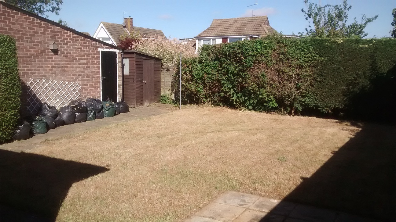 grass after cutting