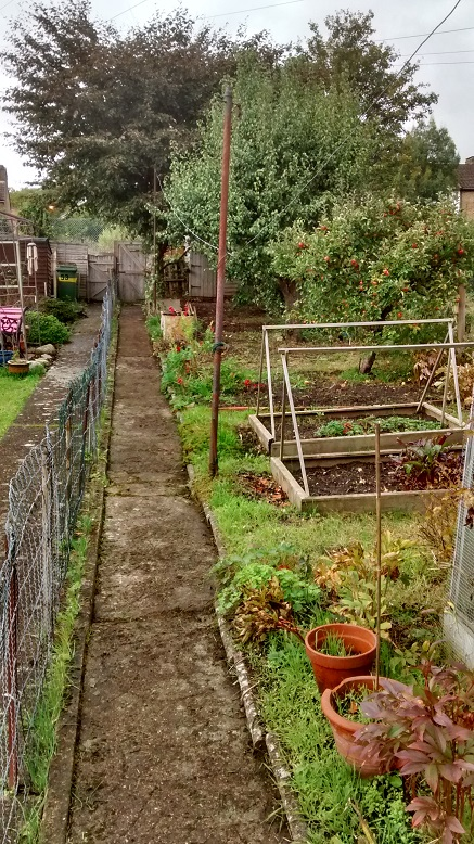 Whole garden cleared