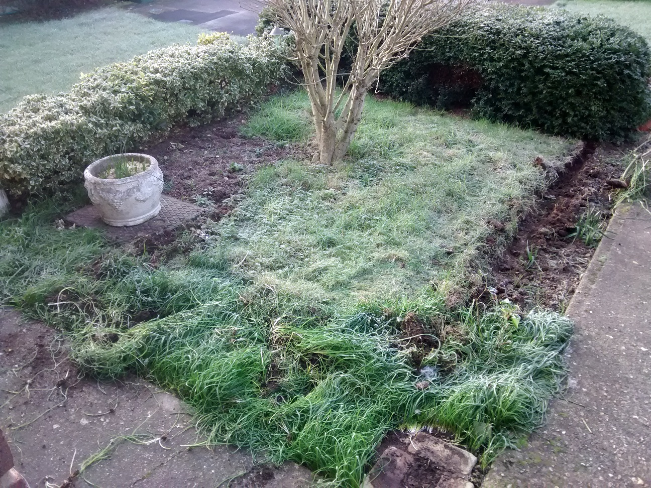 Small patch of grass difficult to maintain