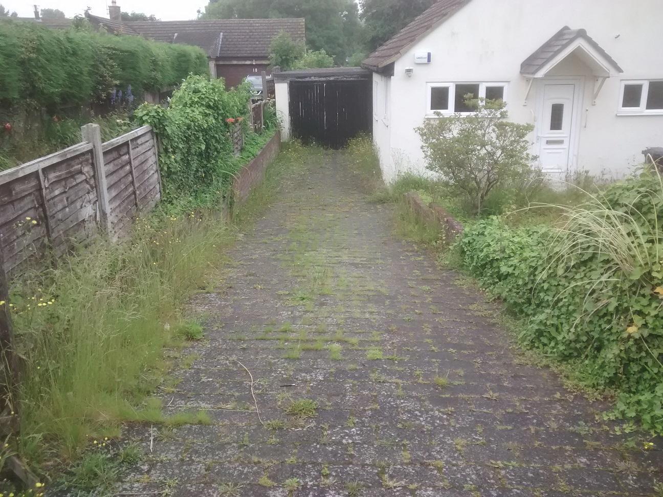 Weedy driveway
